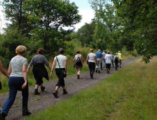 National Walks to raise funds for TEN on 8th – 15th September