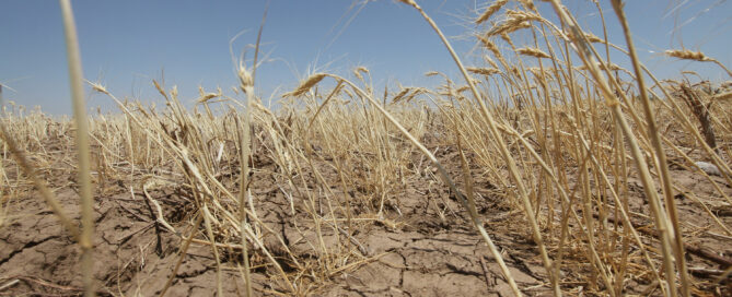 Moldova famine