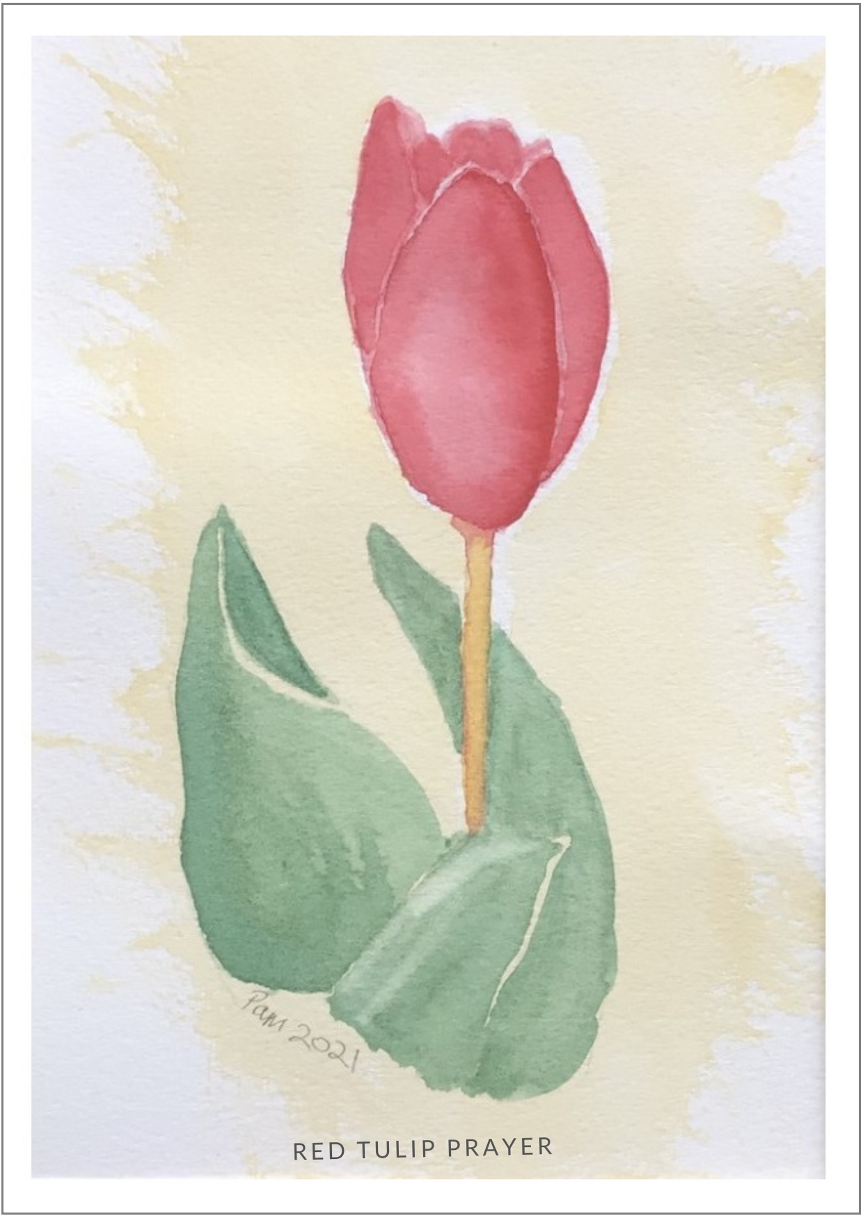 Red Tulip Appeal
