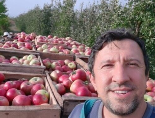 Picking apples and planting churches in the Balkans