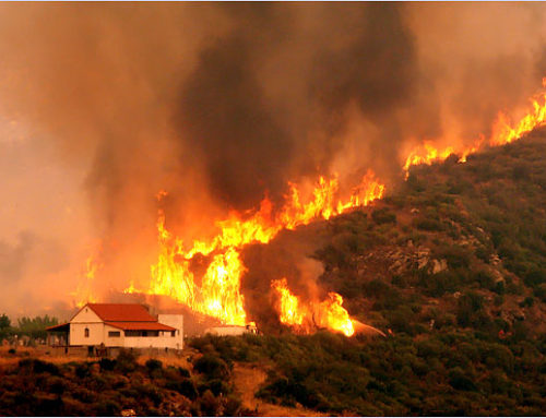 Escape from the fire horror in Greece